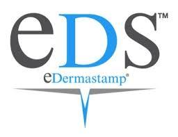 'E Dermastamp Micro-Skin Needling'